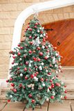 Christmas Tree In Front Of House Royalty Free Stock Photo