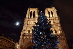 Christmas tree in front of Notre Dame Stock Photography