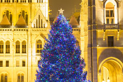 Christmas Tree In Front Off Parliament Building, At Kossuth Squa Royalty Free Stock Photography