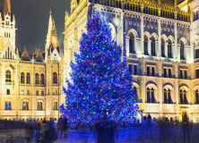 Christmas Tree In Front Off Parliament Building Royalty Free Stock Images