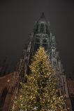 Christmas Tree in front of Ulmer Muenster Stock Photography