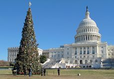 Christmas tree in front of United States Capitol Building in Washington DC, USA. Christmas tree in front of United States Capitol Building in Washington DC Stock Image