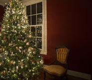 Christmas tree in front of window Stock Image