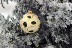 Christmas tree in frost with decoration. Red Christmas balls on a snow-covered tree branch royalty free stock photos