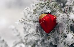 Christmas tree in frost heart. Red glass Christmas hearts on a snowy tree royalty free stock photo