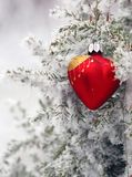 Christmas tree in frost heart. Red glass Christmas hearts on a snowy tree stock images