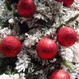 Christmas tree, frost and red Royalty Free Stock Photography