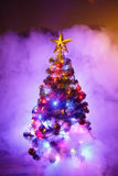 Christmas tree in frozen mist Royalty Free Stock Photo