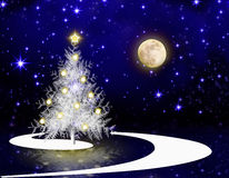 Christmas tree and full moon. Stock Images