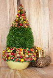 Christmas tree with a gift box Royalty Free Stock Photos