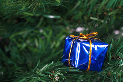 Christmas Tree with Gift Box Stock Image