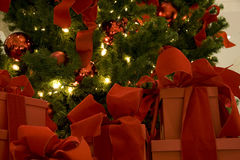 Christmas tree and gift boxes. A beautiful Christmas tree with big gift boxes Stock Photos