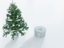 Christmas tree and a gift, 3d Stock Photography