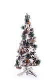 Christmas tree gift winter. Isolated Royalty Free Stock Photo