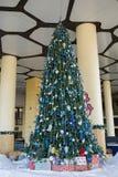 Christmas tree on the street Royalty Free Stock Photo