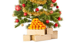 Christmas tree with gifts and mandarines Stock Photos