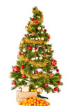 Christmas tree with gifts and presents and mandarines Stock Photos