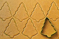 Christmas tree gingerbread cookies Stock Images