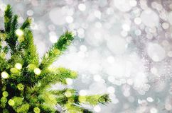 Christmas tree on the glow glitter background. Elegant abstract background with bokeh Stock Images