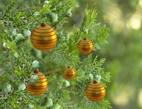 Christmas tree with gold bauble balls decorations Stock Photography