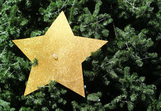 Christmas tree and gold star decoration Royalty Free Stock Photos
