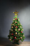 Christmas tree with gold star Royalty Free Stock Photos