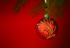 Christmas tree with red bauble on red background. A branch of Christmas tree with red bauble on red background Stock Image