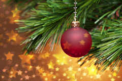 Christmas Tree And Golden Stars. A red christmas ornament hanging from a tree with golden stars royalty free stock photos