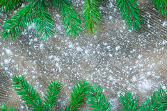 Christmas tree green branches on winter snowbound wooden backgro Stock Photos