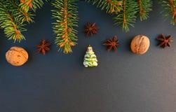 Christmas tree green ornament on black stone background. Fresh spruce tree branch stock photo