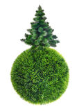 Christmas tree on green sphere Stock Photos