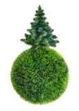 Christmas tree on green sphere Stock Photos