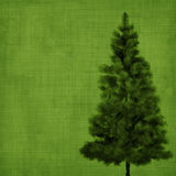 Christmas tree on green vintage background Royalty Free Stock Image
