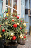 Christmas tree greeting card. Christmas tree with decoration. Greeting card. Winter Royalty Free Stock Photos
