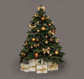 Christmas tree on grey Royalty Free Stock Images