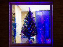 Christmas Tree In The Grocery Store Window. Royalty Free Stock Photo