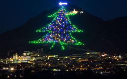 Christmas tree of Gubbio Stock Photography