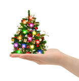 Christmas tree in hand Royalty Free Stock Image