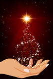 Christmas Tree in hands. Abstract christmas tree on hand. Christmas Tree. Christmas Spirit. Winter holidays Stock Photos