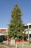 Christmas tree in historic Old Town of Albuquerque, New Mexico Royalty Free Stock Image