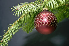 Christmas Tree Holiday Decoration Stock Photography