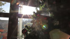 Christmas tree. Holidays video taken in amateur family mood. Sun light reflection from the window stock video footage