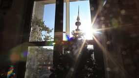 Christmas tree. Holidays video taken in amateur family mood. Sun light reflection from the window stock footage