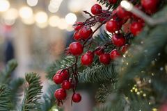 Christmas tree with holly berries as decor and lights with copy space on blurred bokeh background in mall. Close up. Abstract pattern Stock Photos