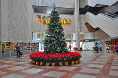 Christmas tree at hong kong cultural centre Stock Photo