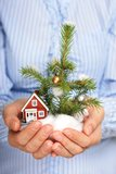 Christmas tree and house. Christmas tree and small house in hands royalty free stock images