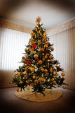 Christmas Tree in House Holidays Decorations Royalty Free Stock Photo