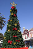 Christmas Tree In Summer Stock Images
