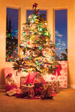 Christmas Tree In The Morning Royalty Free Stock Photo