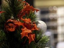 Christmas tree in interior royalty free stock photos